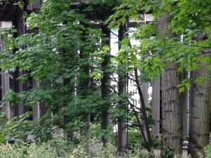 colonnade.jog